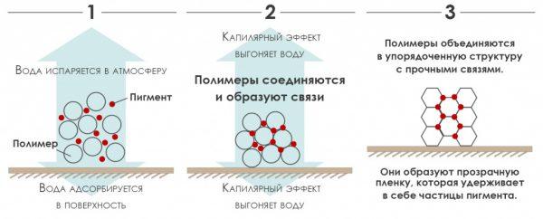 Схема висихання акрилової фарби
