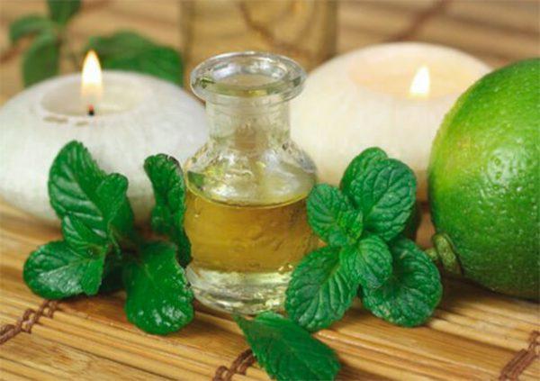 Олія м'яти допоможе позбутися запаху