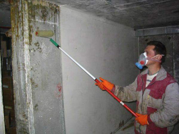 Нанесення на стіни погребу антигрибкового речовини