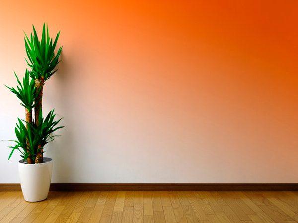 Перехід кольору на стіні