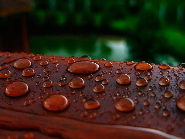 Краплі води на дерев'яній поверхні